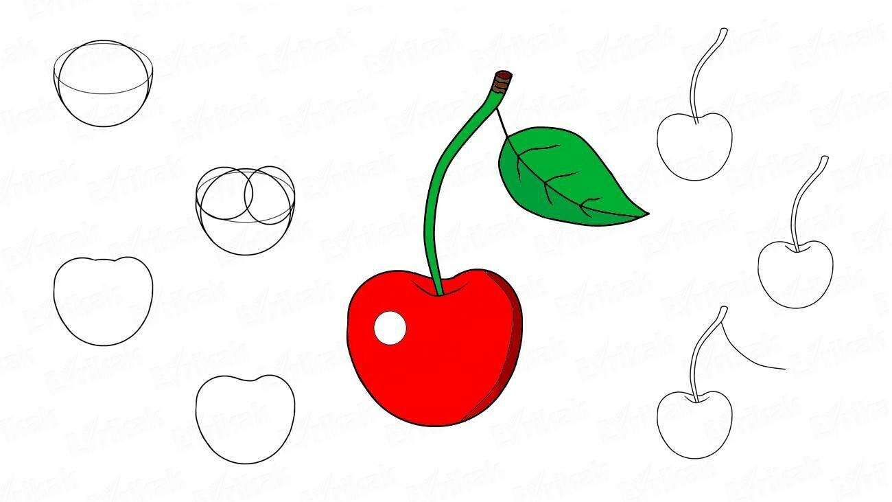 Comment dessiner au crayon la cerise par tapes - Cerise dessin ...