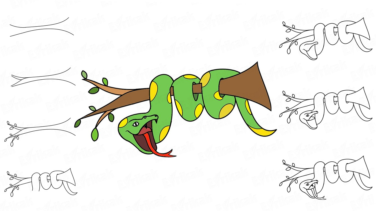 Apprenons à dessiner un serpent du dessin animé sur un arbre (+ Coloriage)