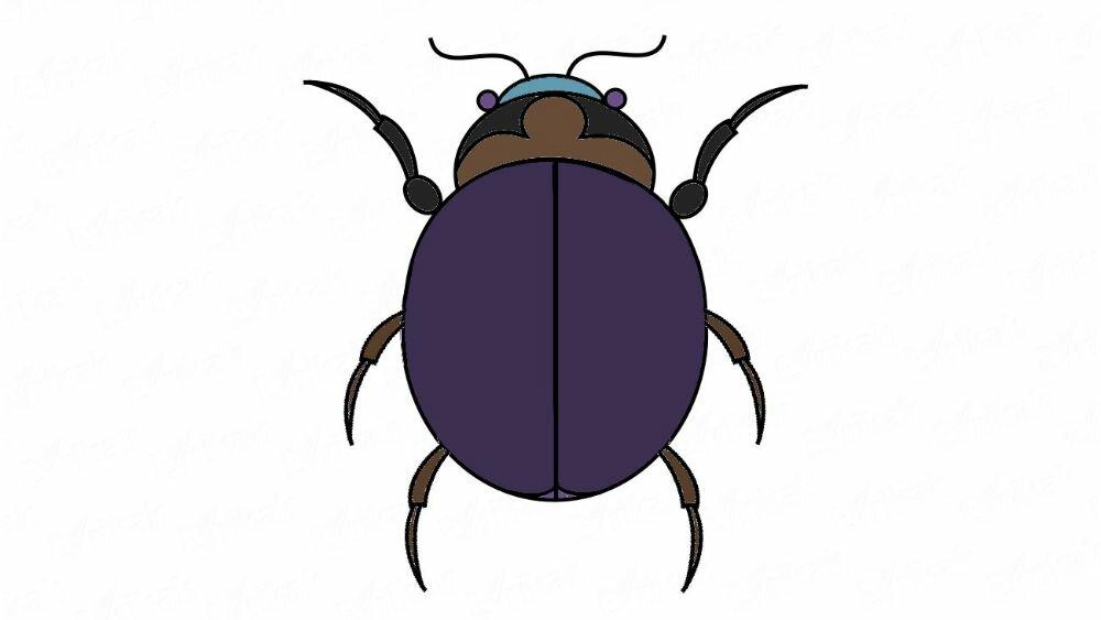 Apprenons à dessiner un scarabée avec un crayon par étapes
