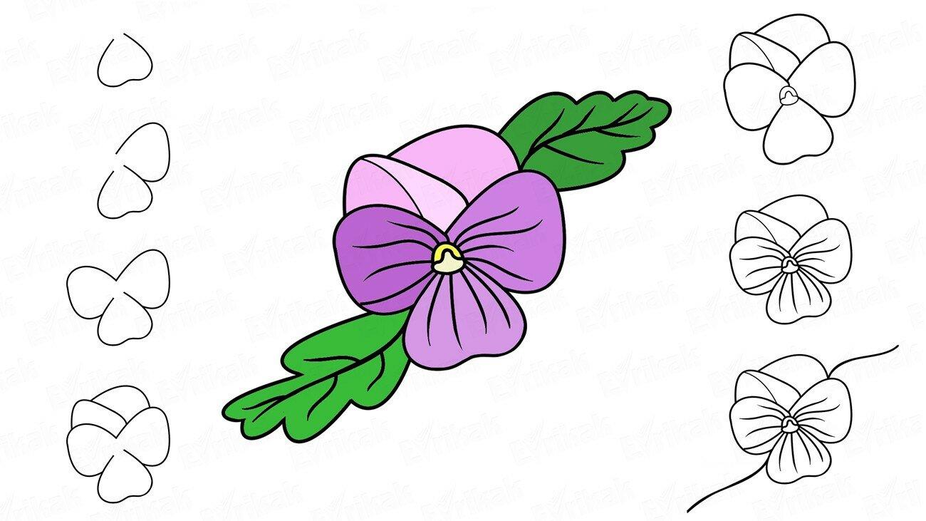 Apprenons à dessiner une fleur Violette pas à pas (+ Coloriage)