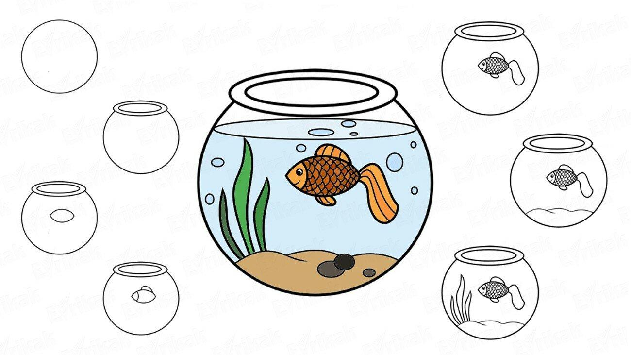 Apprenons à dessiner progressivement un aquarium avec un poisson rouge !